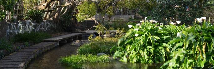Genbegawa, World Heritage Water Area, Mishima