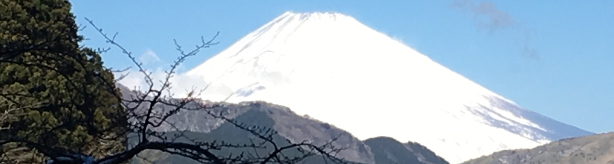 Fuji from Cedar Avenue Lake Ashinoko
